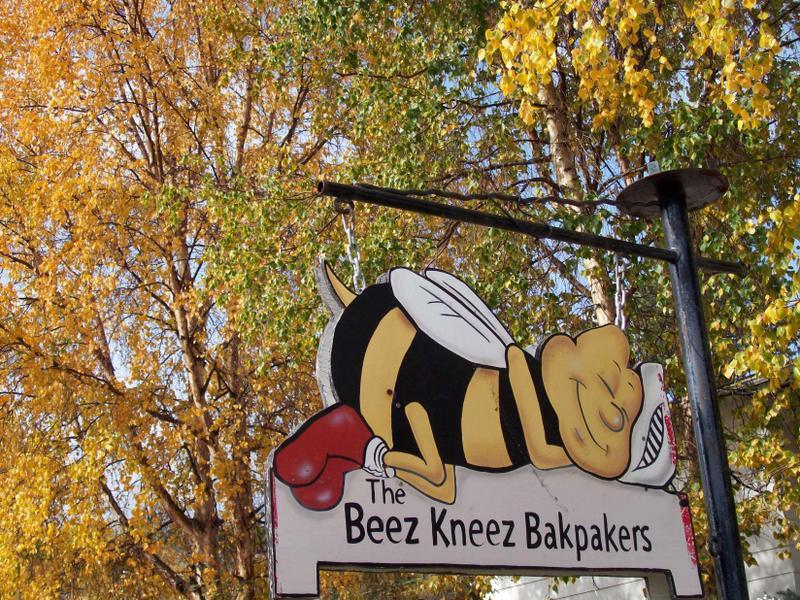 The Beez Kneez Bakpakers Hostel
