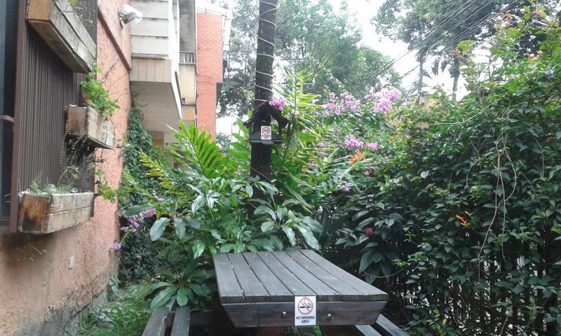 Palm Tree Hostel Medellin