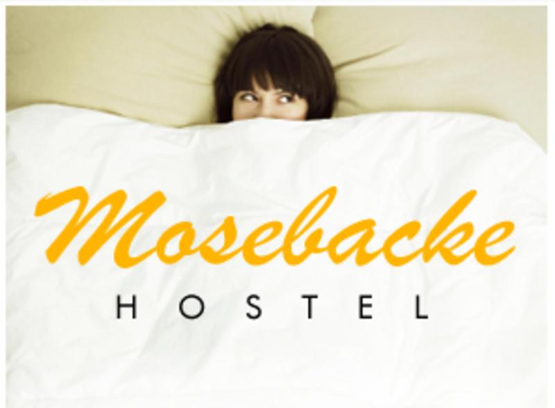 HOSTEL - Mosebacke Hostel