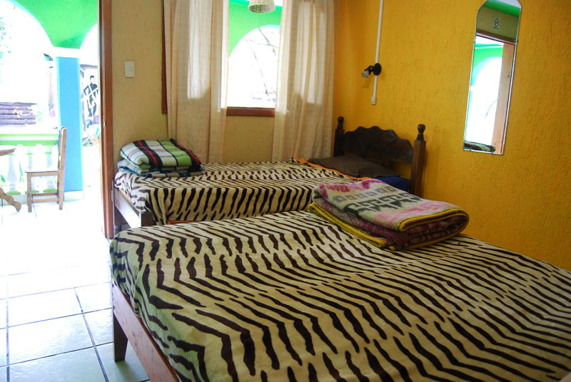 Iguana Hostel