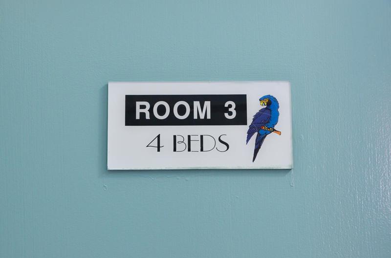 HOSTEL - Blue Parrot Backpackers