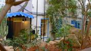 Saifi Urban Gardens