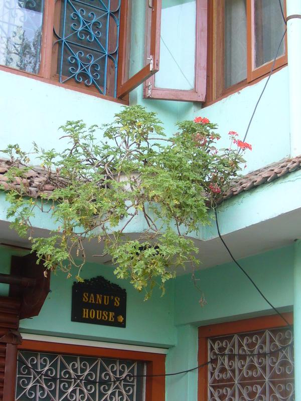HOSTEL - Sanus House