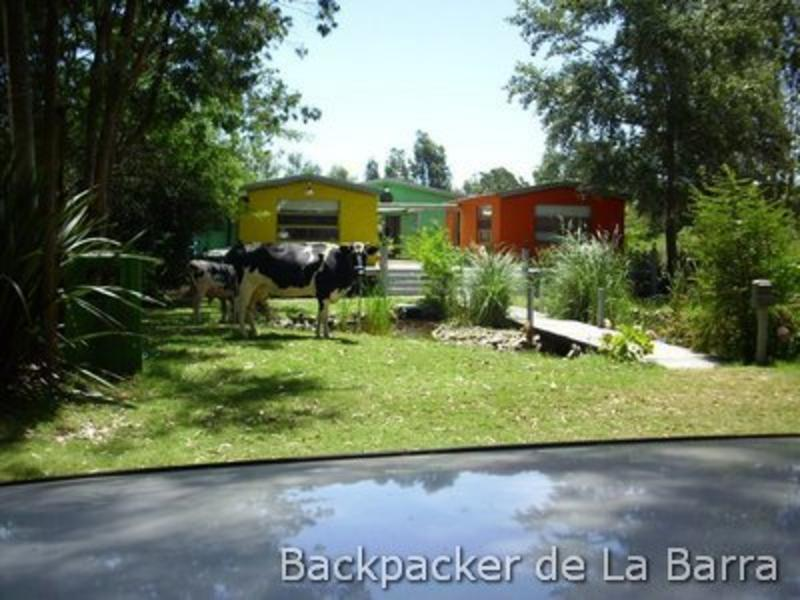 Backpacker de La Barra