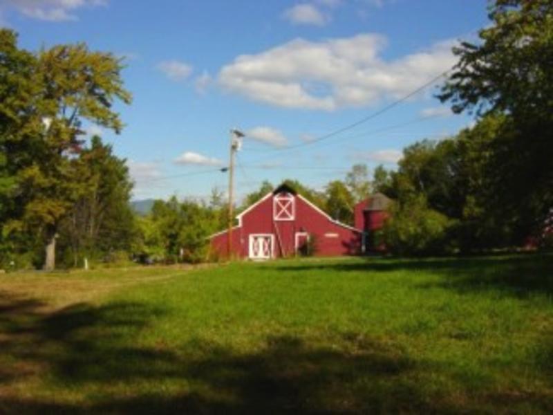 D Acres Organic Farm and Homestead