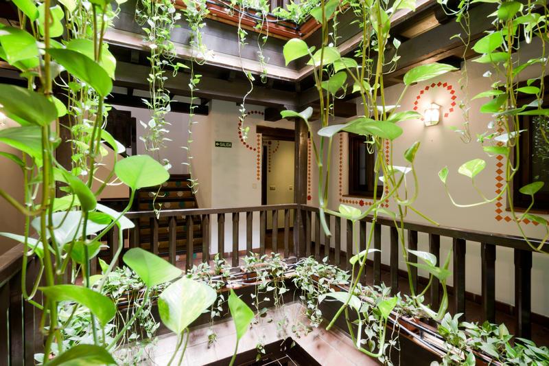 Oasis Backpackers Hostel Granada