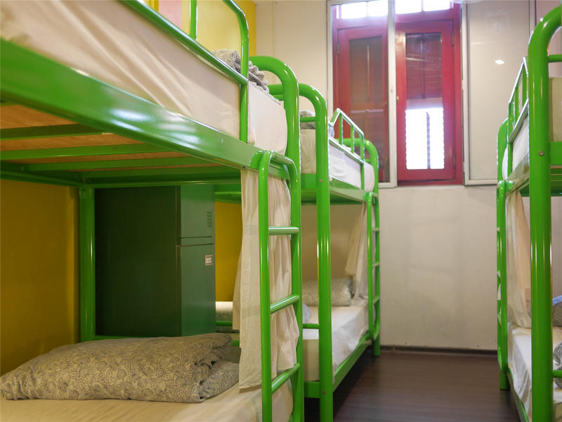 HOSTEL - Beary Best! by a beary good hostel