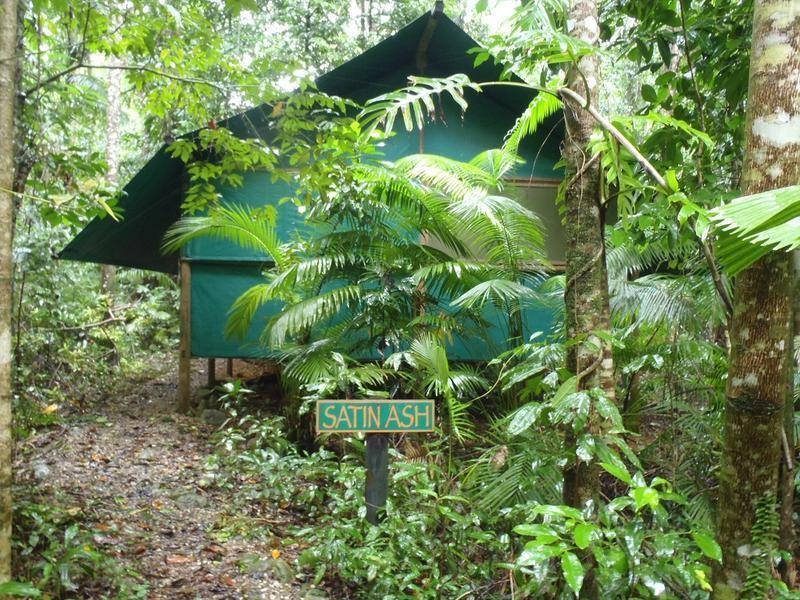 Daintree Crocodylus Village