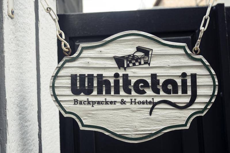 Whitetail Backpacker & Hostel