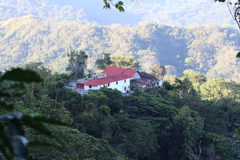 La Candelaria Coffee Farm