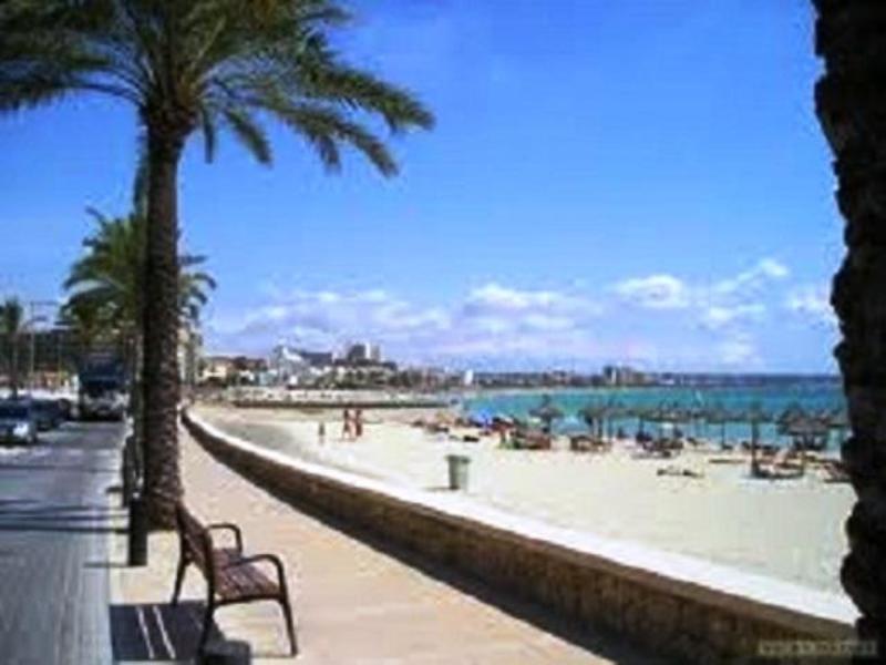 Live Mallorca Hostel