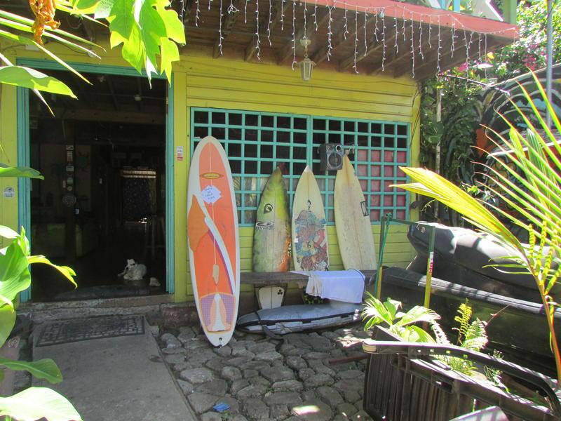 Coconut Hostel