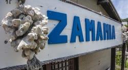 Zamamia International Guesthouse