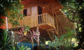 Tropical Pasta Surf House and Hostel