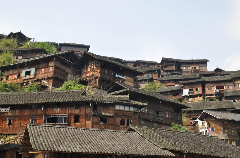 Miao Cat Hostel