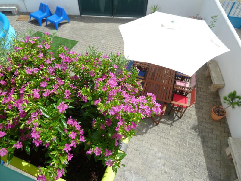 Wine & Surf Hostel Óbidos