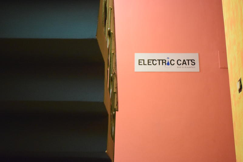 Electric Cats Bed & Breakfast