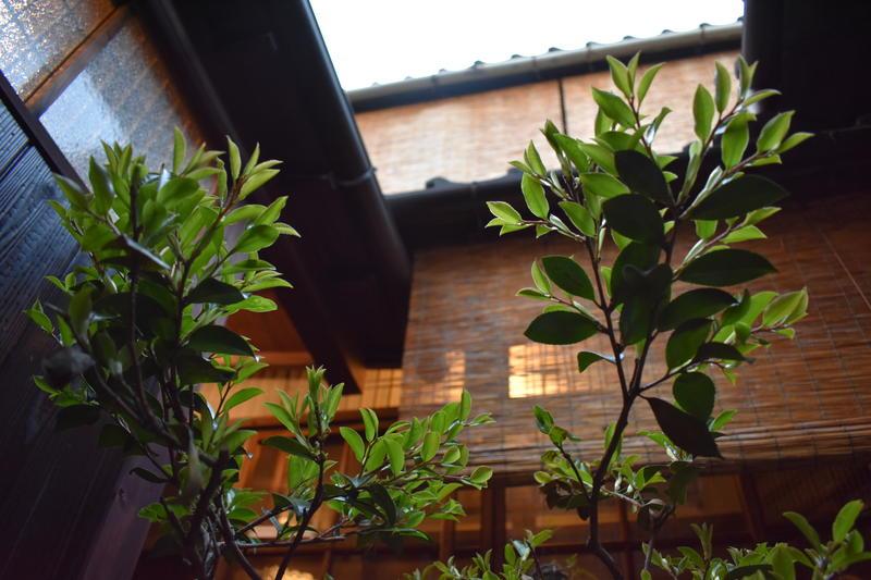 Osaka Guest House Midoriya