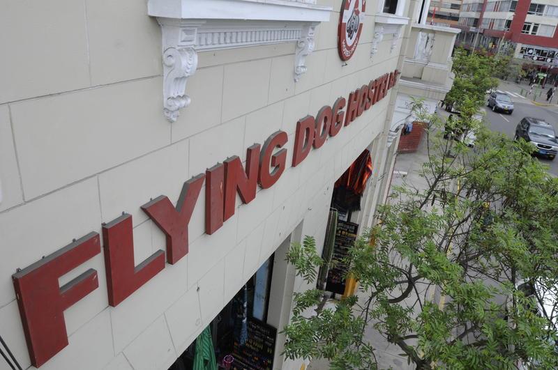 Flying Dog Hostels B&B