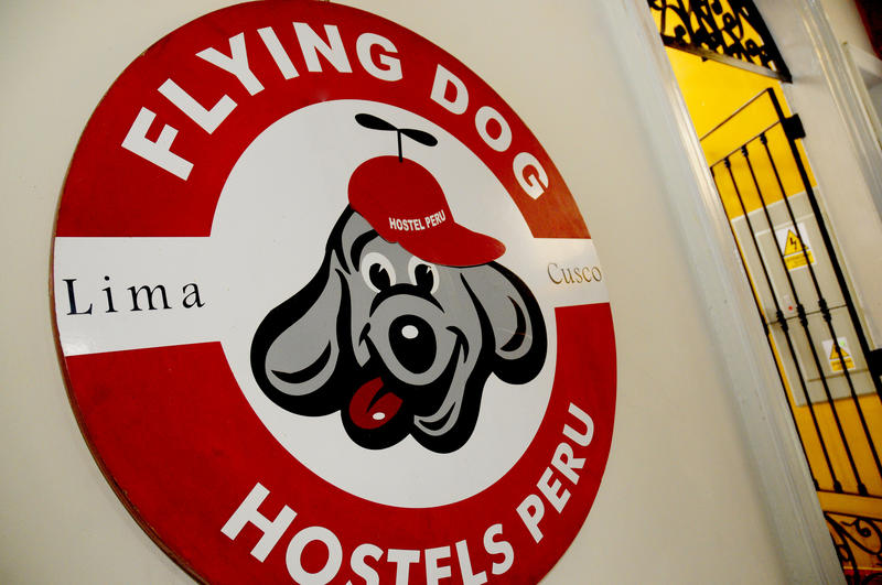 Flying Dog Hostels Backpackers