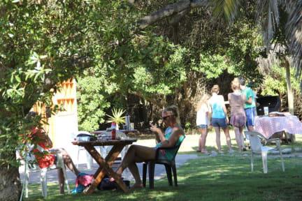 Fotos de Hostal El Arbol  II - Beach