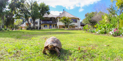 Bilder av Winelands Villa Guesthouse and Cottages