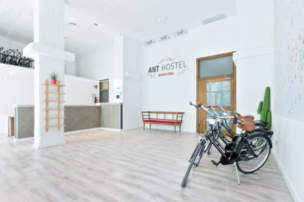 Photos of Ant Hostel Barcelona