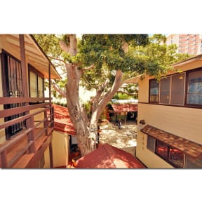 Seaside Hawaiian Hostel Waikikiの写真