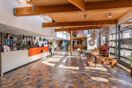 Stayokay Texelの写真