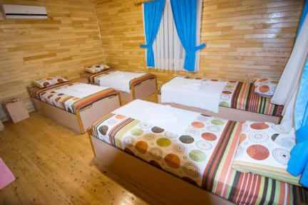 Bilder av Olympos Orange Bungalows
