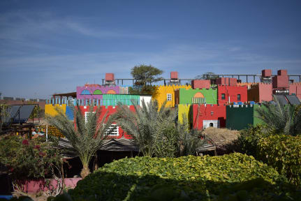 Bedouin Garden Village Aqaba tesisinden Fotoğraflar