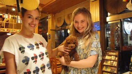 Teddy Bear Hotelの写真