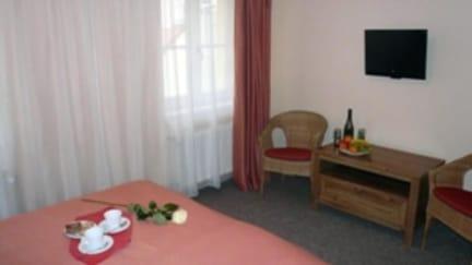 Hotel Karlin照片