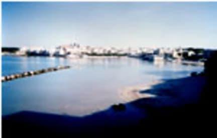 Bilder av Il Gabbiano