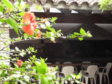 Billeder af De Los Artistas Hostel Mendoza