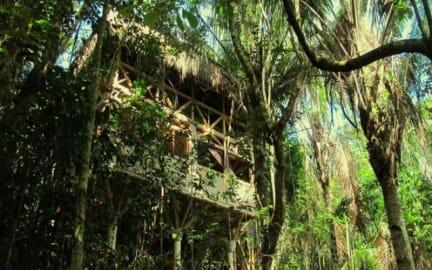 Universo Pol Bamboo Hostelの写真