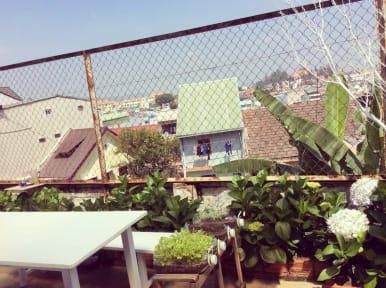Dalat Lucky D's Hostel照片