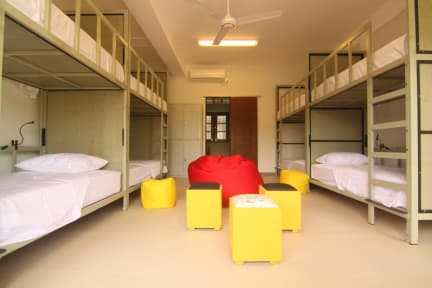 Photos of JJ's Hostel