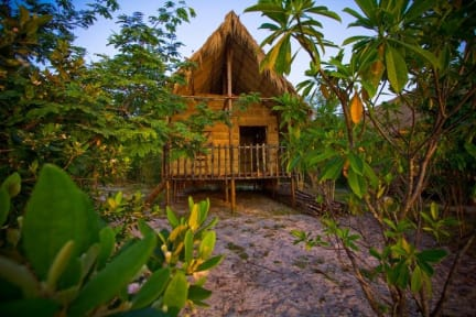 Fotos von Monkey Island Bungalows