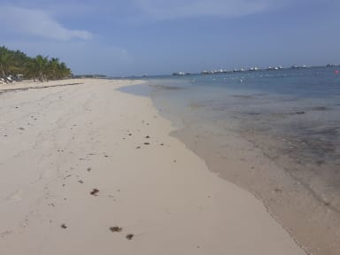 Foton av Lodging House Beach Punta Cana