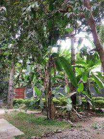 Nyumbani Hostel tesisinden Fotoğraflar