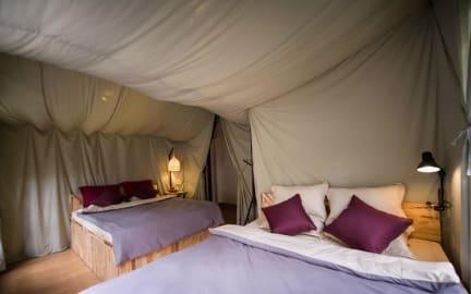 Zdjęcia nagrodzone Yolo Camping House