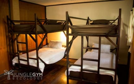 Photos de Jungle Gym & Ecolodge