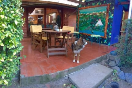Photos of Paradise Pucón Hostel