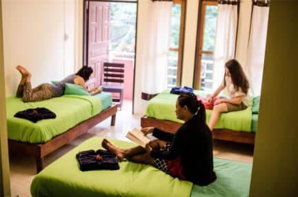 Photos of Coco Khao Sok Hostel