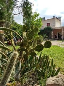 Фотографии San Marcos Sierras Hostel