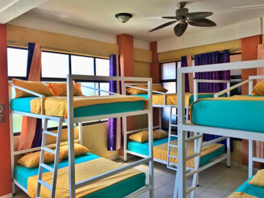Photos de Kiban's Surf Hostel