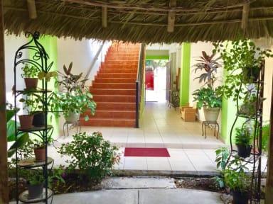 Fotos de Hostal Casa Huasteca