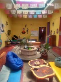 Iguana Hostel Oaxacaの写真