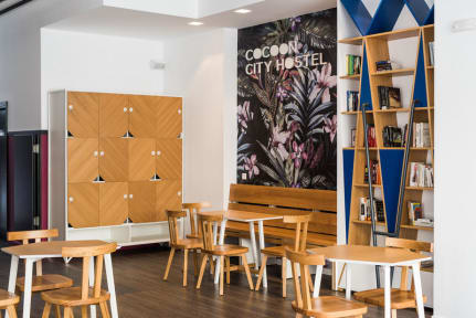 Bilder av Cocoon City Hostel